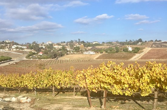 Temecula, CA: View at the winery (Dec. 2016)