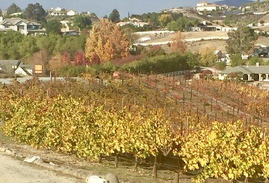 Temecula, Kaliforniya: Views from Vindemia Estate Winery (Dec. 2016)