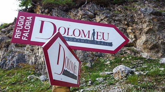 Sentiero Dolomieu Trail