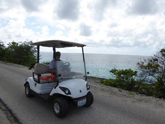 Kralendijk, Bonaire: Unterwegs mit dem Golfcar