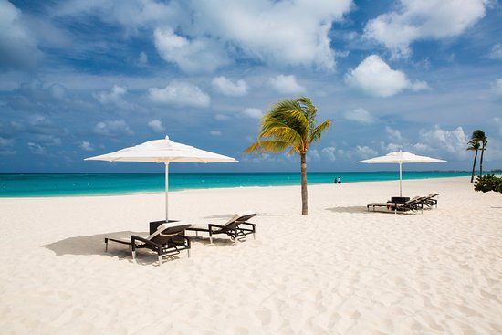 Bucuti Tara Beach Resort Aruba Updated 2018 Prices Reviews Palm Eagle Tripadvisor