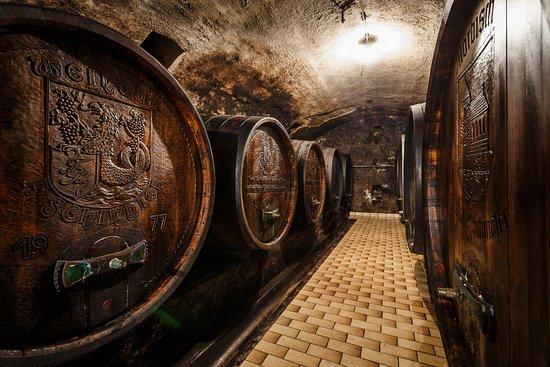 Mörbisch, Austria: Weinkeller mit alten Holzfässern