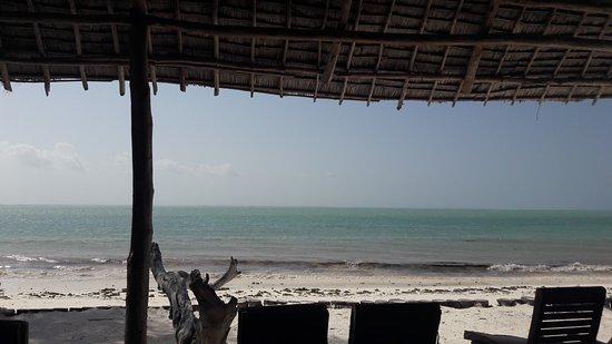 Michamvi, Tanzania: 20170111_151849_large.jpg