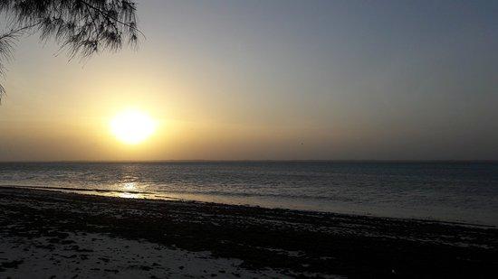 Michamvi Sunset Bay Resort: 20170111_182912_large.jpg