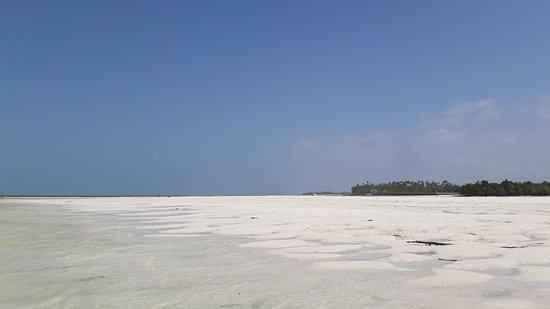 Michamvi Sunset Bay Resort: 20170112_103044_large.jpg