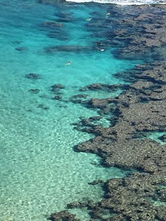 Hanauma Bay Nature Preserve: Crystal clear water with coral and lots of fish.