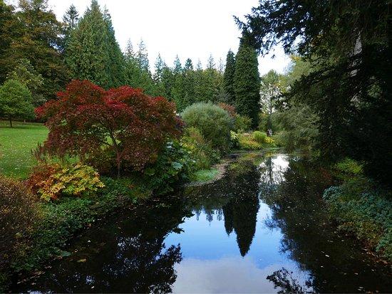 Bedale, UK: Thorp Perrow Arboretum