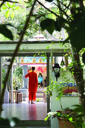 Фотография Sivananda Ashram Yoga Retreat