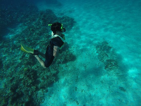 George Town, Grand Cayman: Dream!
