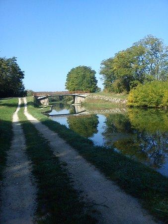Chassignelles, Francja: Canal de Bourgogne, idéal pour les promenades