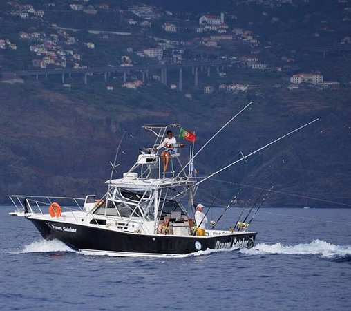 Calheta, Portugal: Dream Catcher sport Fishing .MA Big game Fishing trips