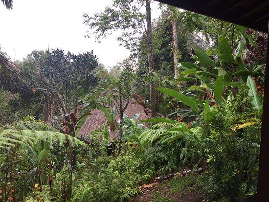Selemadeg, Indonesia: photo8.jpg