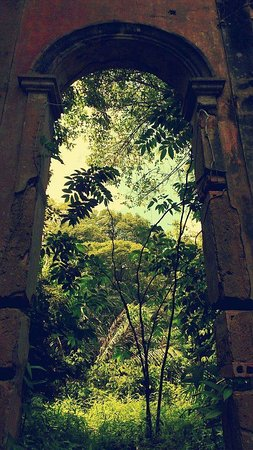 Novo Airao, AM: Ruínas de Airão