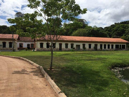 Joao Pessoa Botanic Garden Benjamim Maranhao