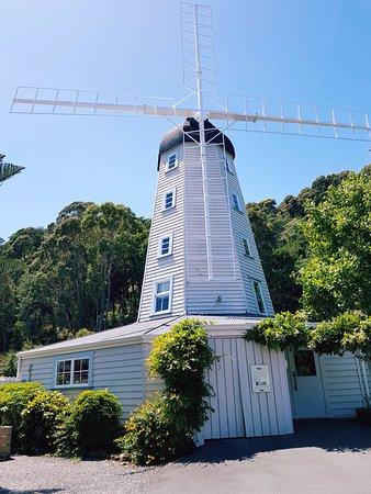 Nelson, Nueva Zelanda: windmill