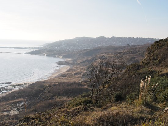 Charmouth, UK: view from garden