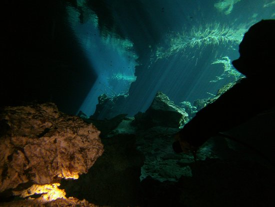 Diversity Diving: This photo was taken in the Cenote (Sink Hole) Chac Mool. Photos do not do this dive justice