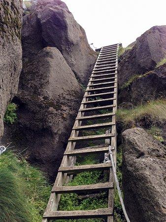 Vestmannaeyjar, Iceland: First ladder