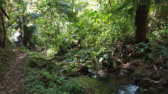 San Gerardo de Dota, Costa Rica: 20170120_105525_large.jpg