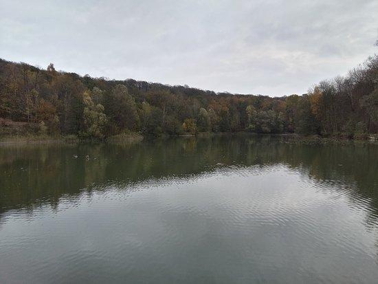 Val-d'Oise, Prancis: Forêt de Carnelle