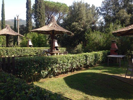 Campiglia Marittima, إيطاليا: Cortile