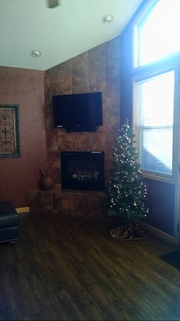 Oak Crest Cottages and Treehouses: Loved the little Christmas tree in the living room