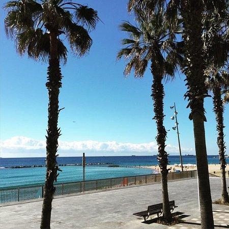 Santa Marta Hotel Barcelona Tripadvisor