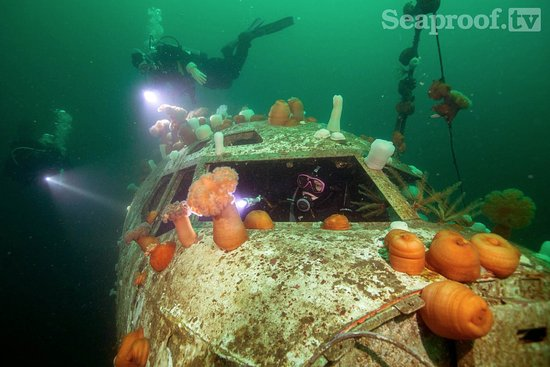 Nanaimo, Canadá: Diving the Boeing 737 with Shepherd Charters