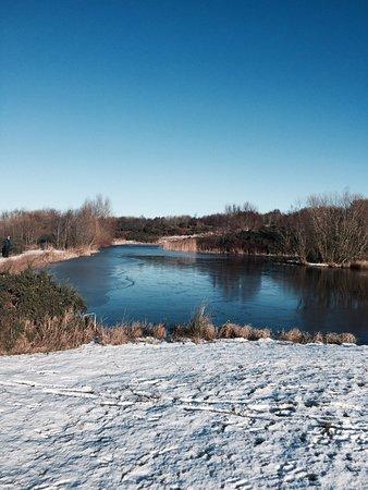 Longhorsley, UK: Meg's lake