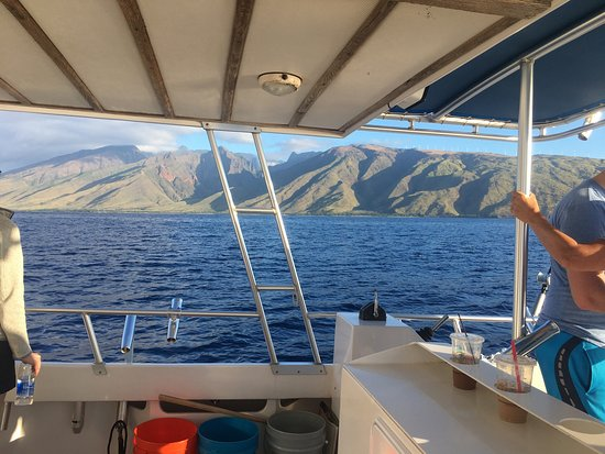Maalaea, ฮาวาย: They exceeded our expectations! Highlight of trip. Mike & Monroe were excellent guides, everyone