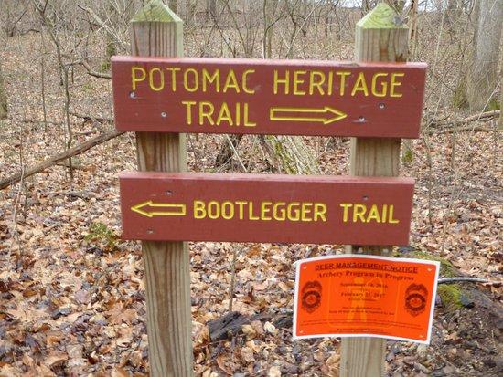 Great Falls, VA: Signs