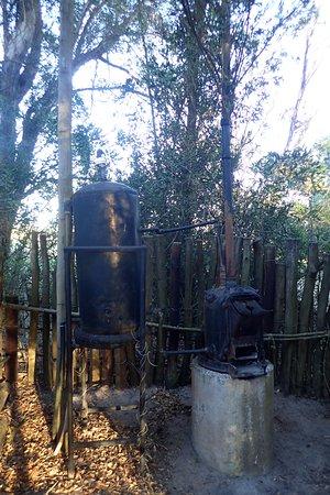 Port Elizabeth, Sudáfrica: Shabby campsite at Kragga Kamma