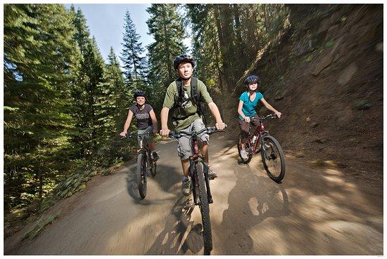 Fish Camp, CA: Mountain Biking - Tenaya Grounds - Sierra National Forest