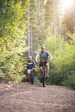 Fish Camp, CA: Mountain Trails - Tenaya Lodge