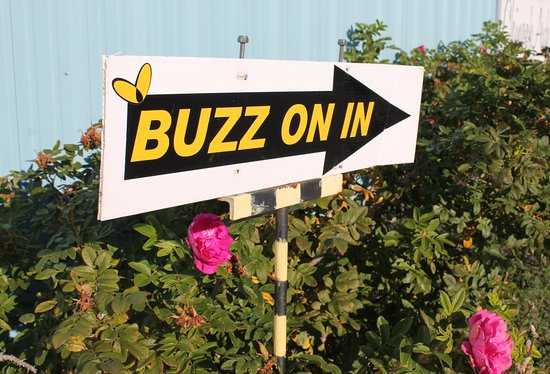 Okotoks, Canada: Buzz on in to our store!