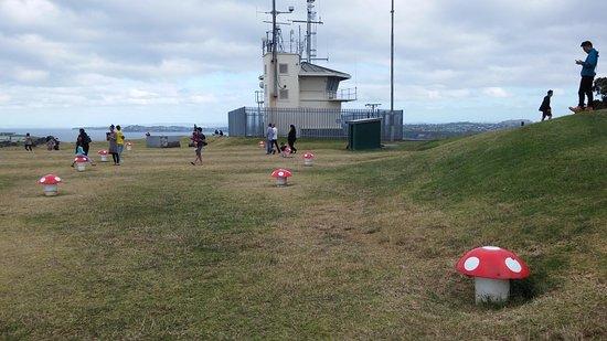Devonport, Nya Zeeland: 마운트 빅토리아