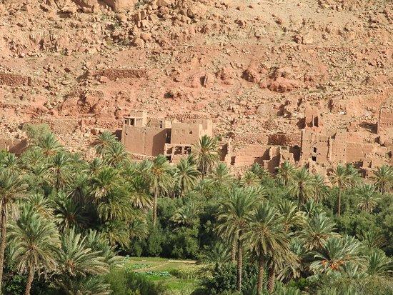 Marrakech-Tensift-El Haouz Region, Morocco: photo8.jpg