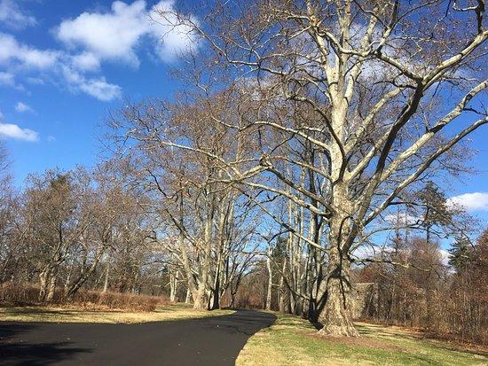 Hillsborough, Нью-Джерси: Lonely roads to ride