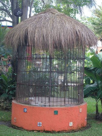 Free Tequila Tour By Casa Mission: Parrot Cage