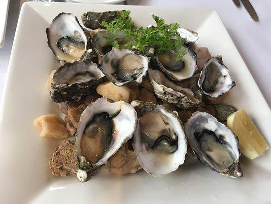 American River, Australia: Fresh oysters