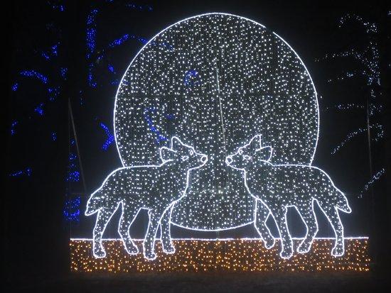 Dufferin Islands Park : lights