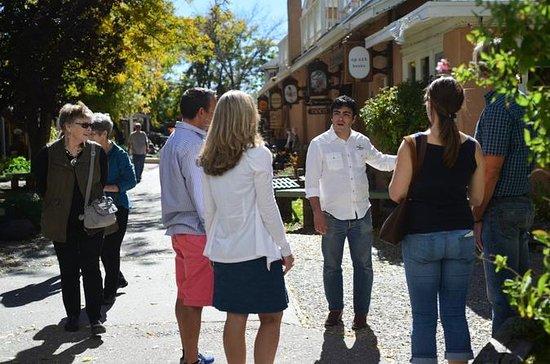 Visite historique du centre-ville de...