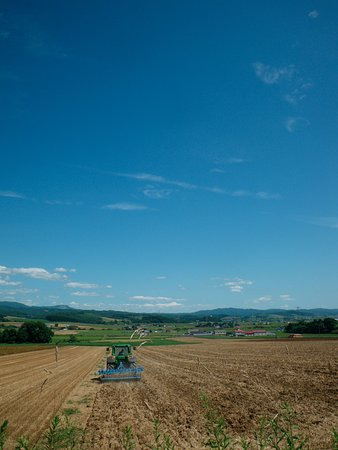 Kuriyama-cho, Japón: 比較的気候が温暖なので農産物の種類も多い