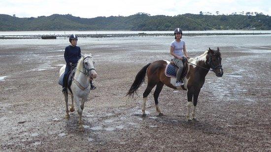 جزيرة واهيكي, نيوزيلندا: Leo and Ranger