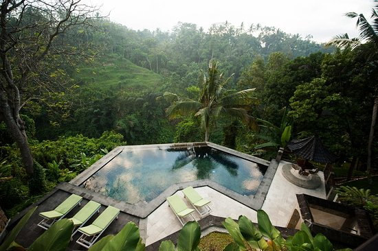 Beji Ubud Resort: Infinity Pool
