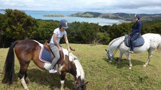 جزيرة واهيكي, نيوزيلندا: snack time for Ranger and Leo
