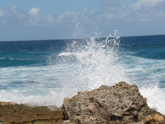 Saint Francois, Guadeloupe: SAM_3081_large.jpg