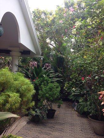 Bella Art & Meditation House