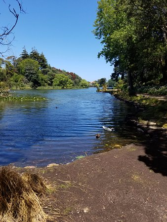 Wanganui, Nueva Zelanda: View from walking path.