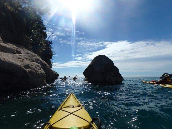 Abel Tasman National Park, Nueva Zelanda: FB_IMG_1484473633475_large.jpg